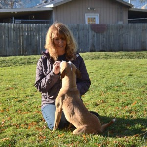 contact Diane's Dog Training